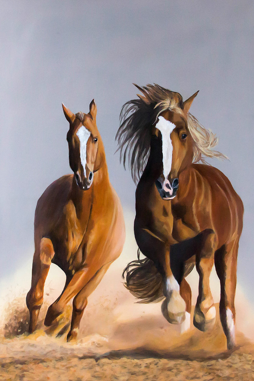 Beispielbild Kurs K-17 Animal Painting: Pferde